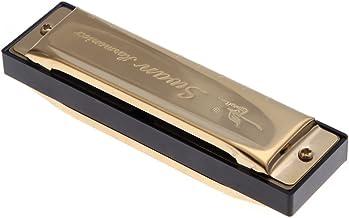 KKmoon Cisne Diatonic Harmônica 10 Buracos Blues Harp Boca Órgão Chave de G Reed Instrumento com Caso Dourado