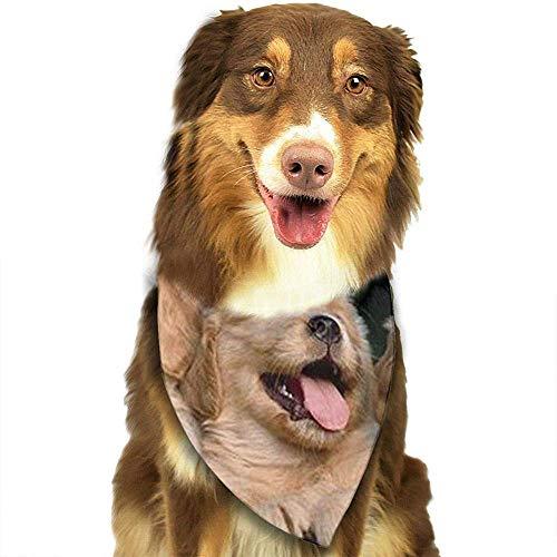 YAGEAD Cane Bandana Cucciolo e Pet Bandane, Golden Retriever Foulard per Animali Domestici