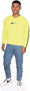 Shaheen Jafargholi (Yellow Jumper) Mini Size Cutout