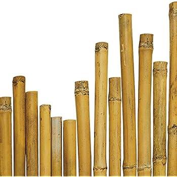 N° 50 Canne Bamboo Bambù cm 210 x Ø mm 20-22 Per piante,agricoltura,orto,arredi,strutture,decorazioni