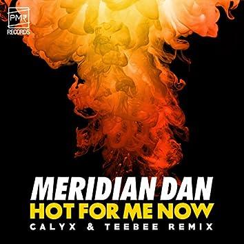 Hot For Me Now (Calyx & TeeBee Remix)