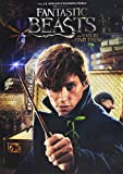 Fantastic Beasts and Where to Find Them (Wal-Mart) (DVD)