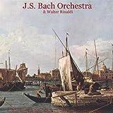 Bach: Violin Concerto No. 1 & Air - Vivaldi: Concertos - Pachelbel: Canon in D - Albinoni: Adagio - Listz: Love Dream - Sinding: Rustle of Spring - Chopin: Waltzes - Walter Rinaldi: Piano Concerto & Orchestral Works