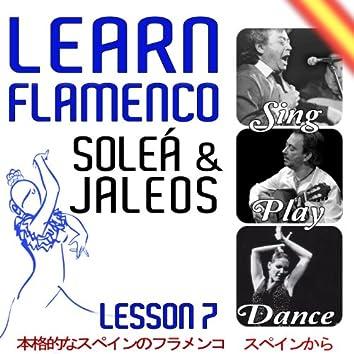 Learn Flamenco. Sing, Play And Dance Soleá And Jaleos. Lesson  7