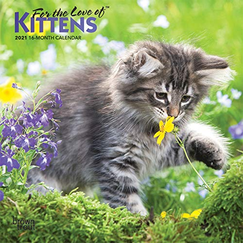 For the Love of Kittens 2021 7 x 7 Inch Monthly Mini Wall Calendar with...