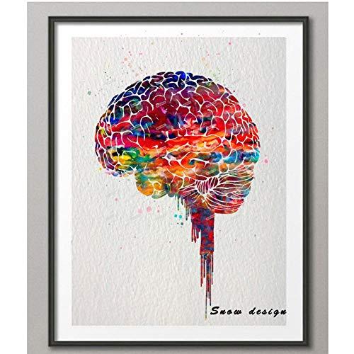 TeriliziOriginal Aquarell Gehirn Poster Print Leinwand Malerei Anatomie Medizinische Wandkunst Bild Home Decoration Print-50X70Cm Kein Rahmen