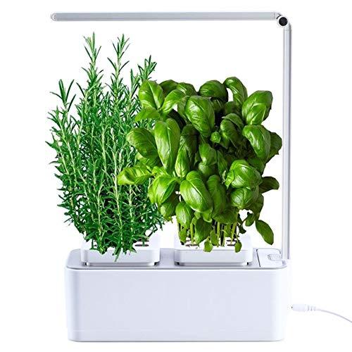 AmzWOW Smart Garden Huerto de Interior 100% Eco