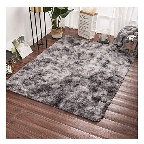 LRHYG Shaggy Teppich Hochflor Langflor Teppich Wohnzimmer Erste Schritte Decke Nordisch Wohnzimmer Bodenmatte Kaffeetisch Decke Pflegeleicht Anpassbare (Color : B, Size : 80x120cm)