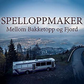Mellom bakketopp og fjord