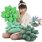 jinetor 3D Succulent Plush Pillow Art Succulent Cactus Decor Pillow,Succulent Pillows Decorative Throw Pillows 3D Home Décor (Green A,25CM/10inch)