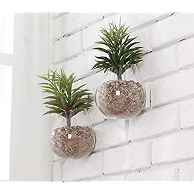 MyGift Clear Glass Wall Mounted Plant Terrariums/Hanging Display Planter Vases Pots Decor - Set of 2
