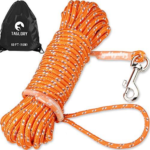 Taglory Lungo guinzaglio da addestramento per Cani 15 m, Nylon Resistente Guinzaglio a Corda, Utile per Controllo e Addestramento del Cane Piccolo, Arancione