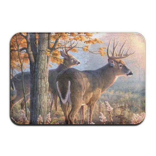 ,Sika Deer?Super Absorbent Pad, Carpet Door Mat, Door Mat, Bath Mat, Anti-Slip Pad, 16x24Inch