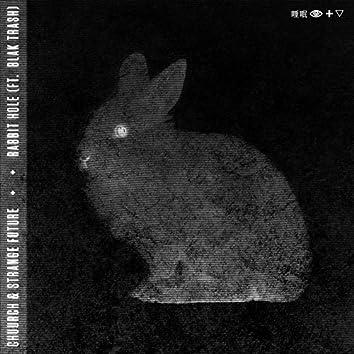 Rabbit Hole (feat. Blak Trash)