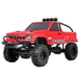 RGT RC Crawlers RTR 1/24 Scale 4WD 2.4Ghz Remote Control Truck,Radio Controlled Off-Road RC Crawler Electronic Monster Truck R/C RTR Hobby Grade Rock Crawler with LED Lights