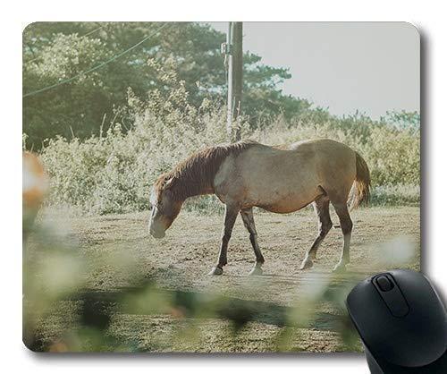 Yanteng Alfombrillas de ráton del Caballo, Campo del Animal de la Agricultura, Estera del ratón del Caballo