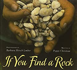 If You Find a Rock book