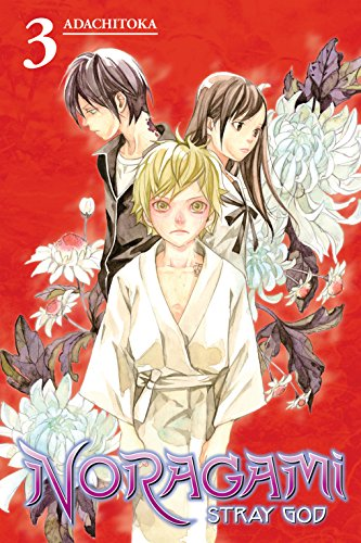 Noragami: Stray God Vol. 3 (English Edition)