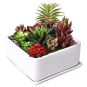 Silk Flower Arrangements Modern 7 inch Square Ceramic Succulent Planter Pot with Drainage Tray, Window Box & Saucer, White