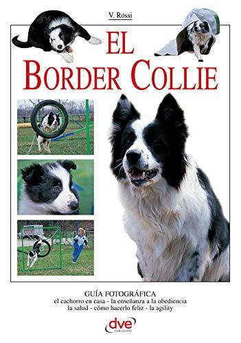 El border collie