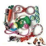 Giochi per Cani Cuccioli, Masticare Giocattoli per Cani, Set di Giocattoli per Cani, Corda da Masticare Resistenti e Lavabili per La Pulizia dei Denti per Piccolo a Medio Pet (10 Pezzi)