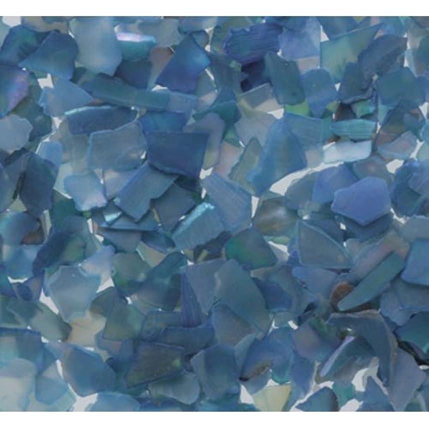 時間とともにステーキ思春期ピカエース ネイル用パウダー シェルグレイン SS #307 ブルー 1g