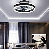 Moderno Lamparas Ventilador De Techo,40Cm Temporizador Ventilador De Techo con Luz Y Mando A Distancia, Dormitorio Pequeño Ventilador Techo con Luz Silencioso,Negro