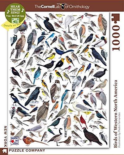 QMGLBG 500 tabletas Rompecabezas Juego de Rompecabezas Rompecabezas Experimental de Aves de Cornell,...