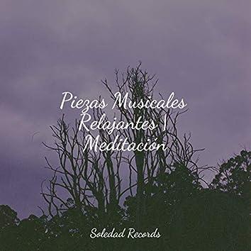 Piezas Musicales Relajantes   Meditación