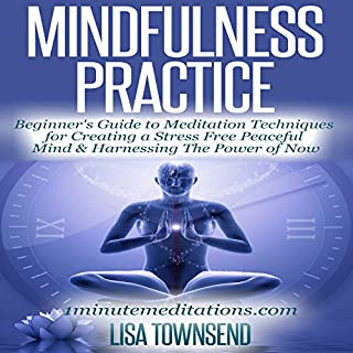 Mindfulness Practice cover art