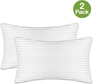 Sivio Premium Bed Pillow, 2 Pack, Luxury Plush Pillow Insert for Home and Hotel, Superfine Microfiber 100% Cotton, Skin-Friedly, Personal Care Loft Pillow for Good Sleep, Queen