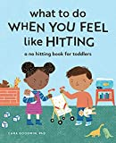 What to Do When You Feel Like Hitting: A No Hitting Book for Toddlers