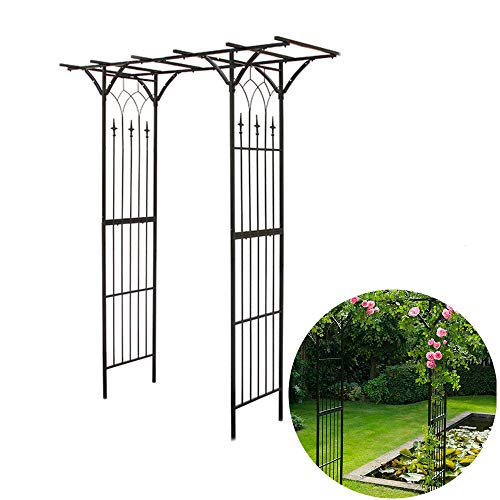YOGANHJAT Pérgola Metal Arco de Metal para Rosas Arco de jardín Plantas Arco para Enredaderas Arco de Rosas para Escalada Plantas & Rosas