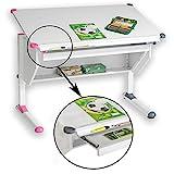 CARO-Möbel Kinderschreibtisch Philipp - mit Schublade höhenverstellbar, neigbar - Schreibtisch für Schüler, Wechselkappen rosa pink und grau für Jungs Mädchen
