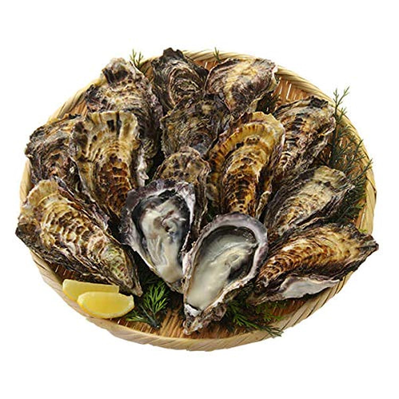 広島県産 牡蠣 殻付き 10個 冷凍