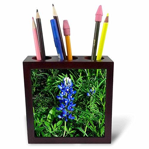3drose PH 21120 1 Provence zonnebloemen tegels pennenhouder, 12,7 cm