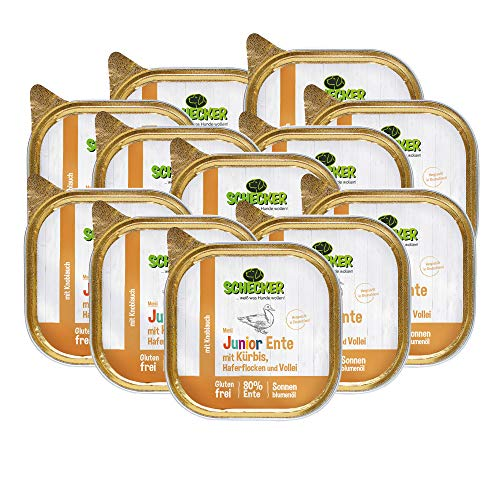 Schecker Hundemenü Nassfutter 12 x 200g Junior mit 80% Ente mit Kürbis Haferflocken und Vollei Weizenfreies Hundefutter