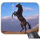 Smity Fashion Diseñado Mousepad 30 * 25 * 0.3 cm Almohadillas de Escritorio de Oficina y Familia Alfombrilla de ratón Semental Negro
