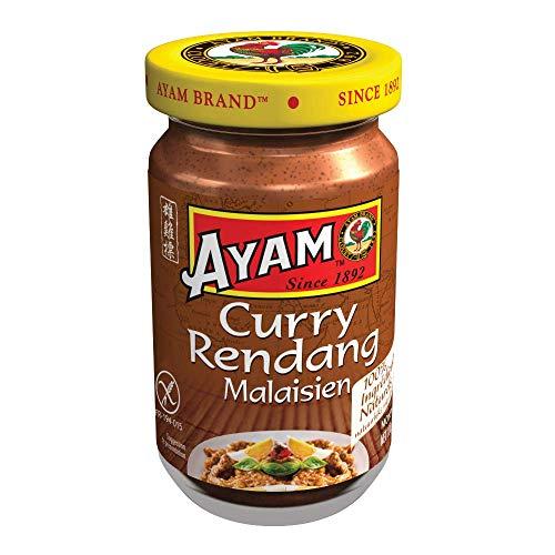 AYAM Pâte de Curry Rendang | 100% Ingrédients Naturels | Saveurs Authentiques | Facile à cuisiner | Curry Malaisien | Sain | Sans Gluten | Sans Lactose | Sans Conservateurs -100g - 1pc