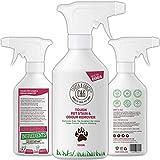 C&G Pets - Detergente per macchie di urina e odori per animali domestici, formula per cani e gatti ad alto numero di batteri, enzimi naturali, antibatterico