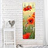 Garderobe - Top Blumen Garderoben, Größe HxB: 139cm x 46cm, Motiv: Roter Sommermohn