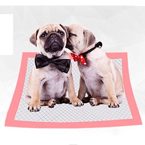 shanzhizui Windeln für Hunde biologisch abbaubar Dicke Hundehundwindeln Hundeauflage Haustier Windel Pad Hundebedarf, L