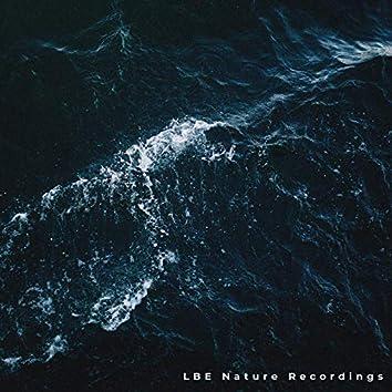 Ocean Sounds Vol. 3