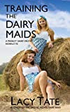 Training the Dairy Maids (Manley Dairy Book 2) (English Edition)