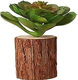 HKDHI Estatuas Decoración Retro Flor Planta Verde Bonsai Planta en Maceta Tienda Sala de Estar Conjunto de Muebles para el hogar Pila de Madera Planta en Maceta