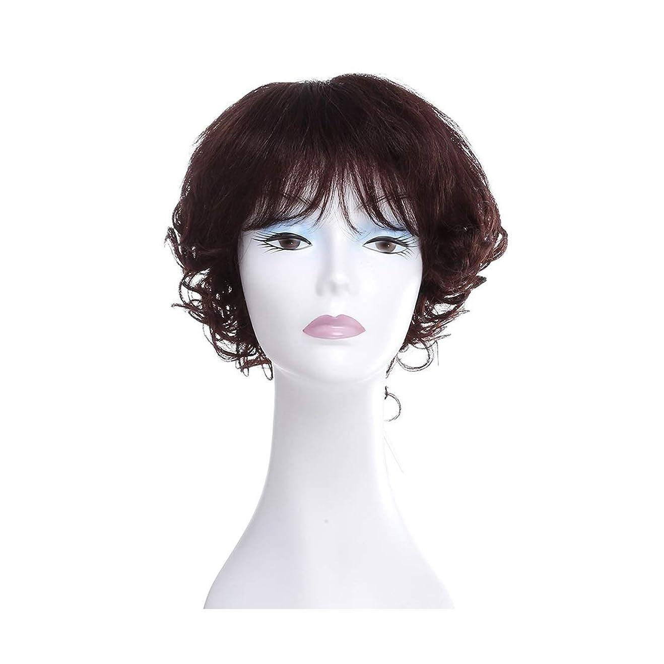 特別な櫛ティーンエイジャーKoloeplf 100%リアルヘアストレッチネット気質ふわふわカーリーヘアウィッグレディースウィッグ (Color : Photo Color)