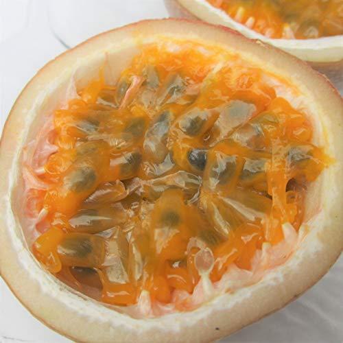 沖縄県産フルーツ パッションフルーツ 1kg(8〜12玉)