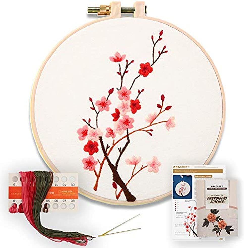 Akacraft DIY Embroidery Starter Kit, Cotton Fibric with Stamped Pattern, 6 inch Plastic Embroidery Hoop, Color Threads, and Needles, Chinese Traditional Flowers Series-Plum Blossom