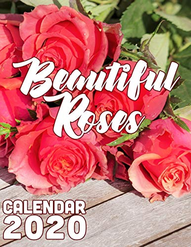 Beautiful Roses 2020 Calendar: 14-Month Desk Calendar Featuring One of the World's Most Popular Flowers