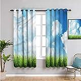 Xlcsomf Sky Black Out Cortinas para dormitorio, cortinas de 213 cm de largo para día soleado nubes de césped cortina de café 213 cm de ancho x 84 cm de largo